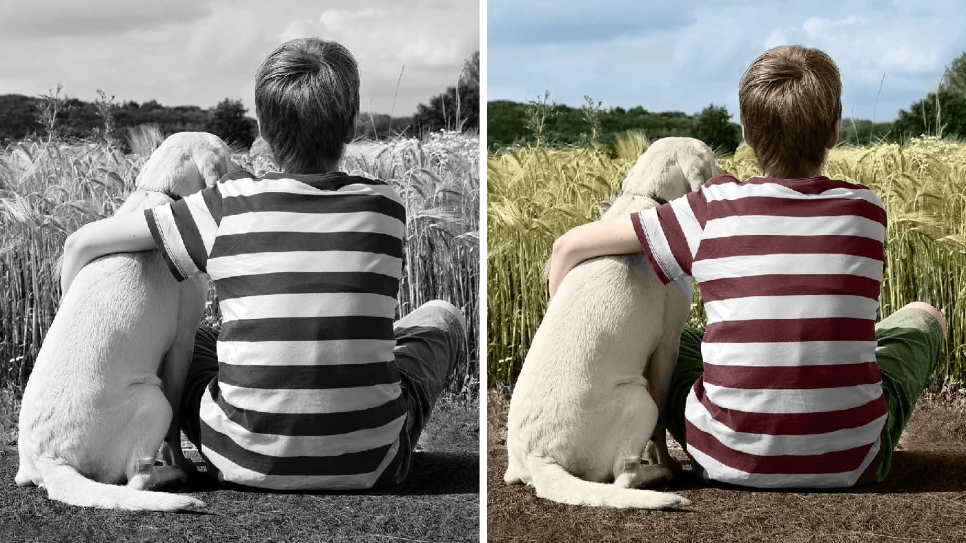 Adobe Sensei can automatically color your black and white photos