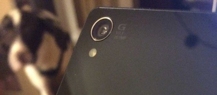 Sony's current flagship, the Xperia Z3 sports a 20.7 MP sensor - a favorite of this writer's dog, Bella.