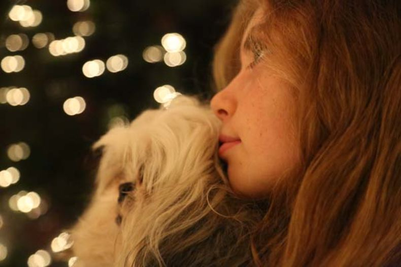 twinkle lights backlighting a child and pet, giving depth to a black background