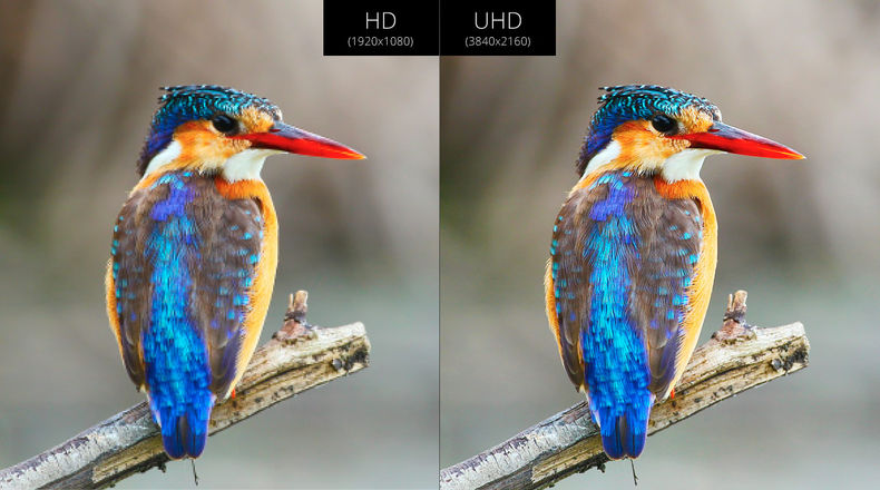 HD and Ultra HD side by side comparison