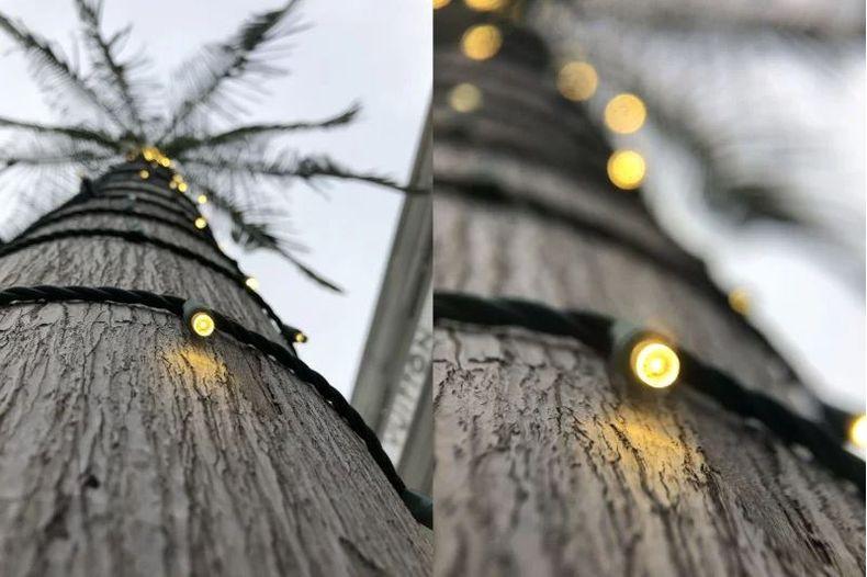 Original (left) and using the long range Pro macro lens (right)