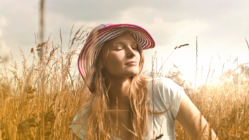 The Sun: Everyone's Light Kit