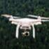 DJI Phantom drone flying above trees