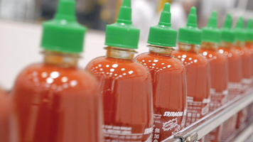 Sriracha bottles in the factory