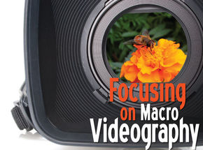 Zoom In On Macro Videography