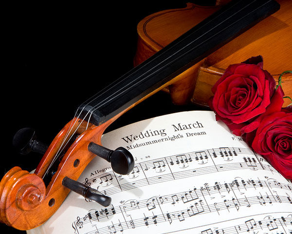 wedding-music-voilin