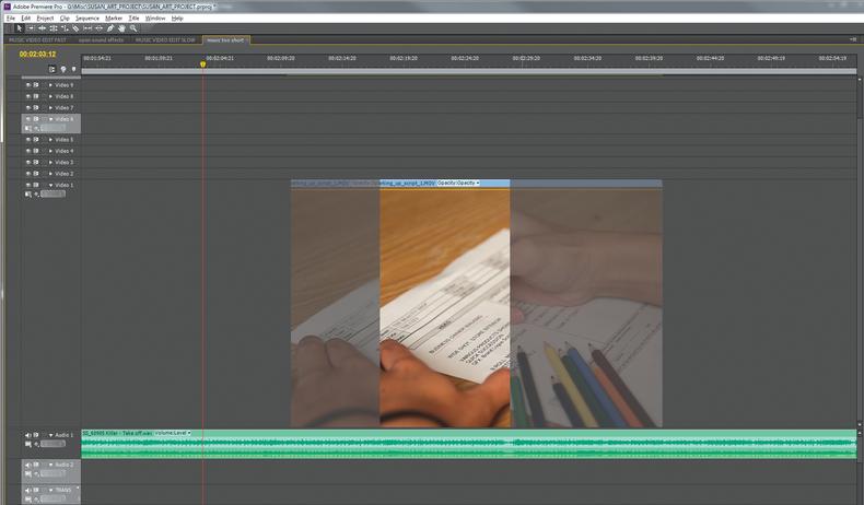 Timeline of Adobe Premiere Pro