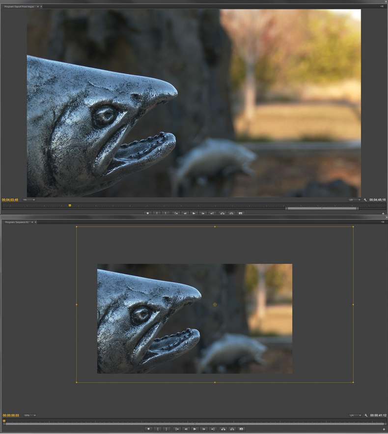 Salmon sculpture shown in 4K and HD setting
