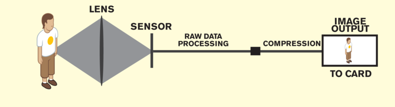Infographic diagram of a lens' sensor in relation to the raw data and image output.