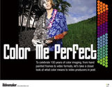 Color Me Perfect (eDoc)