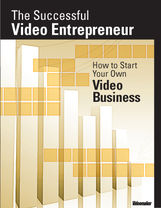 The Successful Video Entrepreneur