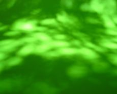 Webinar Wednesday Presents: Green Screen and Special Effects