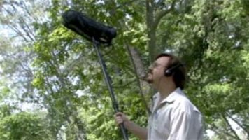 Record Sound Effects On Location