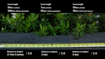 3 shots compared with different settings to demonstrate depth of field