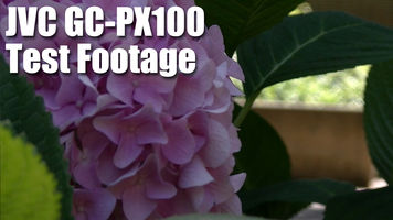 still frame from jvc gc px100 test footage with flowers