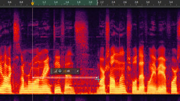screen shot of the spectral frequency view in adobe audition