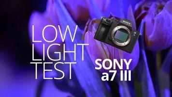 Sony a7 III - Low Light Test - ISO noise